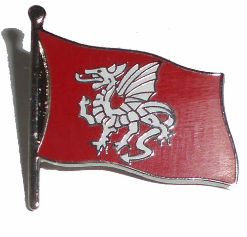 Saxon White Dragon flag Pin Badge